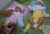 Thương 2 bé song sinh mất mẹ khi chưa đầy tháng tuổi