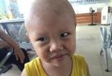 Bố mẹ bỏ nhau, bé trai 2 tuổi bị ung thư cầu cứu