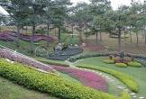Báo Thái Lan ấn tượng Đà Lạt từ cái nhìn đầu tiên