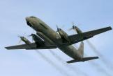 Nga bác tin Il-20 bị bắn rơi vì lỗi hệ thống nhận diện