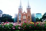 Khách Tây thích thú vườn hoa đầy sắc màu trước nhà thờ Đức Bà