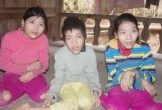Xót cảnh 3 đứa trẻ Khơ mú lết đi bằng đầu gối