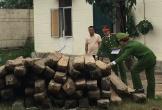 Cất giấu 59 hộp gỗ lậu trong nhà vẫn bị phát hiện