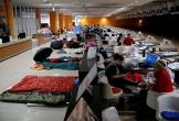 Nhật Bản sơ tán khẩn cấp hàng trăm nghìn người vì bão Hagibis