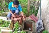 """Quy hoạch khu dân cư """"bỏ quên"""" mương thoát nước tại Hà Tĩnh"""