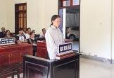 Hà Tĩnh: Đốt cỏ ruộng gây cháy rừng, nữ nông dân nhận án 2 năm tù