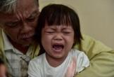 Quảng Bình: Con dâu qua đời, ông nội bán lúa non cứu cháu gái ung thư