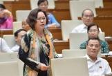 Clip: Nữ đại biểu hỏi Chính phủ có kỷ luật Bộ trưởng bộ GD&ĐT và bộ GTVT?