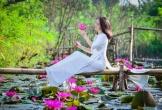 Nao lòng với vẻ đẹp của Suối Yến mùa nước nở hoa