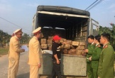 Hà Tĩnh: Phát hiện cảnh sát, xe chở gỗ tăng tốc bỏ chạy
