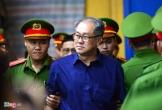 Kháng nghị bản án, buộc công nhận 114 BĐS thuộc sở hữu của Phạm Công Danh và Tập đoàn Thiên Thanh