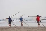 """Một lần """"săn"""" ruốc biển đặc sản Cửa Lò cùng ngư dân Nghệ An"""