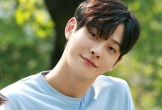 Tài tử Hàn Quốc đột tử ở tuổi 27