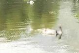 Hà Nam: Phát hiện thi thể người đàn ông trên sông Đáy