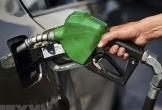 Giá dầu châu Á chạm mức cao nhất kể từ đầu năm 2019
