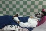 Việt kiều bị tạt axit ngày Tết: Đôi mắt bị tổn thương nặng