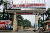 Gang thép Thái Nguyên sai phạm hàng loạt, ế hơn 18 triệu cổ phiếu