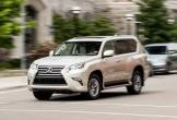 Dòng xe ô tô SUV này đang 'dính' lỗi túi khí nghiêm trọng, tài xế Việt cần biết