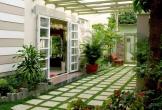 Trải nghiệm 11 bí kíp giúp ngôi nhà xanh ngắt xanh