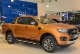 Thị trường xe bán tải cũ sắp sôi động khi phí trước bạ tăng gấp ba