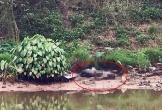 Phát hiện thi thể nam giới đang phân hủy trên sông Nhuệ