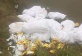 Các nghi phạm chở gần 700 kg ma túy đi vứt ở Nghệ An khai gì?