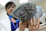 Tỉ giá 'nóng' lên, NHNN tuyên bố sẵn sàng bán ngoại tệ can thiệp