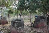 Bí ẩn hơn một trăm 'chum của người chết' trong rừng ở Lào