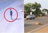 Kinh hoàng người đàn ông lao vào xe khách tự tử