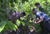 Video: Bắt nữ nghi phạm chém chết 3 bà cháu, giấu xác ở Lâm Đồng