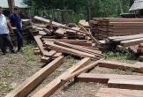 Quảng Bình: Phát hiện gần 5m3 gỗ trái phép giấu trong trụ sở UBND xã