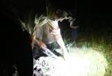 Rọi đèn đi săn cua, kiếm bội tiền mỗi đêm