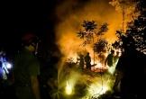 Hà Tĩnh: Huy động hơn 50 cảnh sát tham gia chữa cháy rừng ven đê La Giang