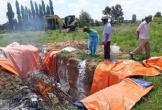 Hà Tĩnh: Dân tá hỏa vì mua phải lợn giống dính vi rút dịch tả lợn Châu Phi từ Công ty TNHH Japfa Comfeed Việt Nam