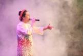 Nghệ sĩ Việt ủng hộ hơn 300 triệu đồng khắc phục cháy rừng ở Hà Tĩnh