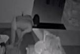 Người đàn ông mặc quần lót, ngang nghiên vào nhà người khác trộm cắp