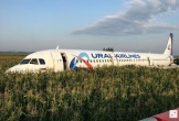 Máy bay chở khách hạ cánh xuống đồng ngô