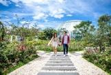 5 địa chỉ tình yêu nhất định phải đến ở Việt Nam