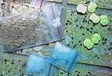 Hơn 50 người dương tính ma túy trong quán bar ở Ninh Thuận