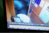 Ông già cưỡng hôn bé gái trong thang máy nhưng không bị tống giam vì lý do khiến dân tình phẫn nộ