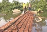 Bị nước lũ nhấn chìm, VQG Vũ Quang khẩn cấp