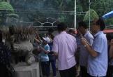 Khu di tích Ngã ba Đồng Lộc đón hơn 3.000 lượt khách trong dịp Tết đầu năm