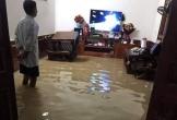 Hà Tĩnh: Thượng nguồn xả 3 đập lớn, hạ lưu ngập chìm trong biển nước