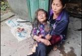 Nam thanh niên dùng rơm thiêu sống cụ bà hơn 90 tuổi để cướp tài sản