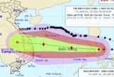 Bão Molave giật cấp 14 đi vào Biển Đông, bão số 8 tan dần