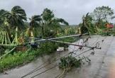 Bão Molave càn quét Philippines, ít nhất 13 người mất tích