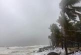 Bão số 9 đã đổ bộ, mưa lớn, gió rít từng hồi