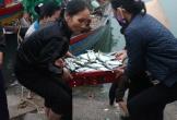 Lộc biển đến với ngư dân Hà Tĩnh