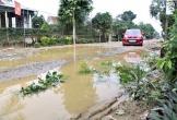 Hà Tĩnh: Dân rải gốc cây, đá ngăn ôtô tải 'cày nát' đường