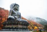 Những điểm đến đẹp nhất Hàn Quốc, hết Covid-19 phải xách balo đi ngay